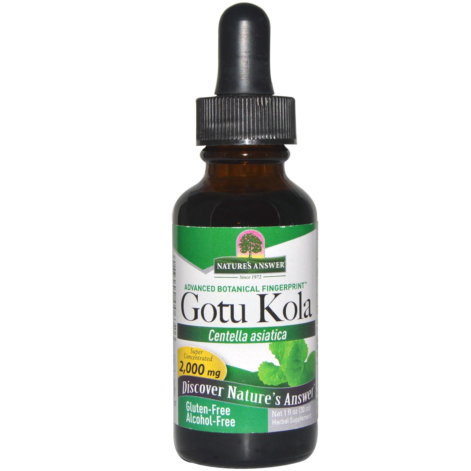 Image of Gotu Kola, Alcohol-Free (30 ml) - Nature's Answer 0083000006326