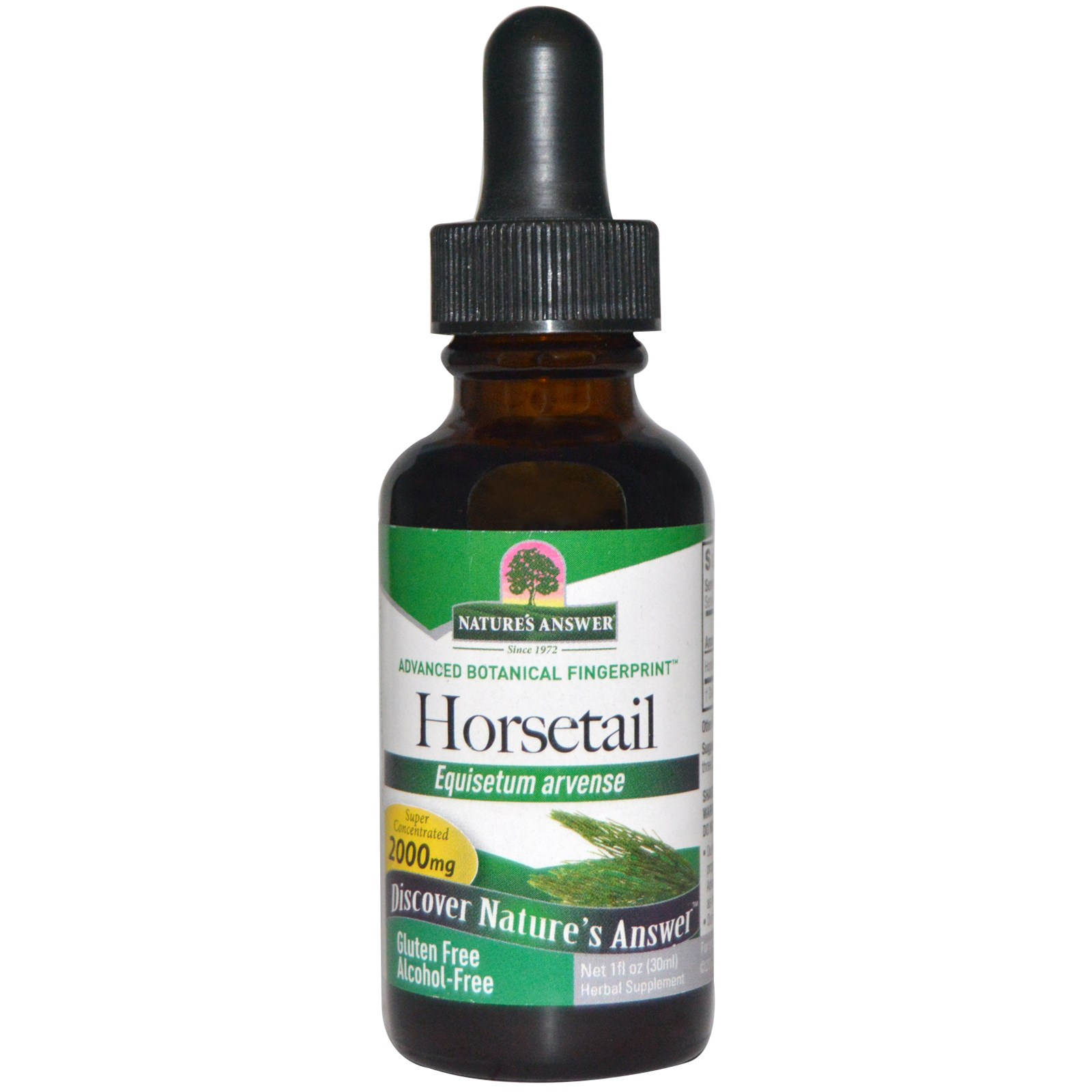 Image of Horsetail, Alcohol-Free, 2000 mg (30 ml) - Nature's Answer 0083000006371