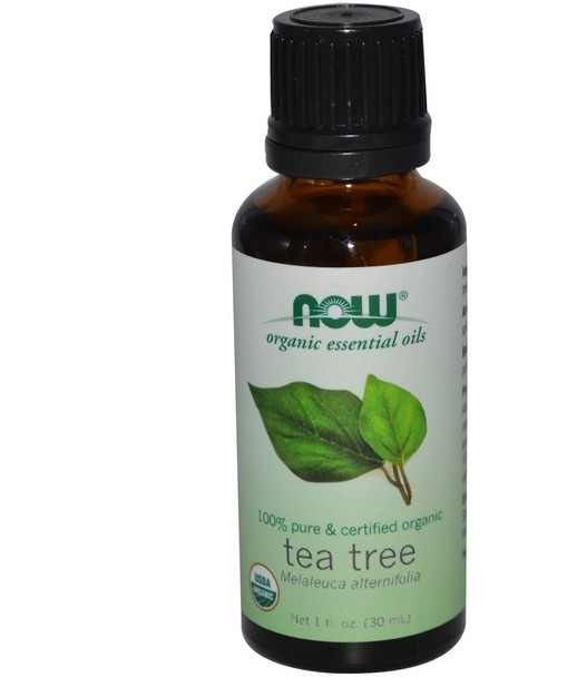 Image of Oli essenziali biologici - albero del tè (30 ml) - Now Foods 0733739074706